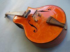 Robert Hurst's 5 string acoustic arch top bass