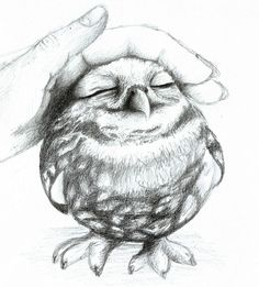10 Clever Owl Drawings for Inspiration, http://hative.com/clever-owl-drawings/,:
