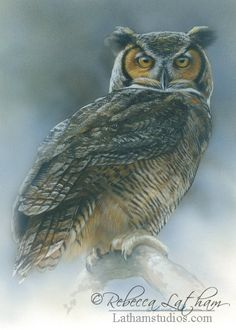 Blue Mist – Great Horned Owl, 5in x 7in, opaque and transparent watercolor with sterling silver and 24kt gold on board, ©Rebecca Latham