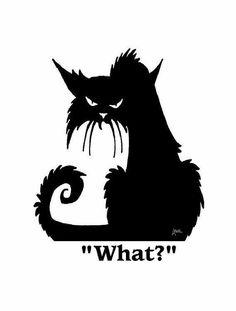 Vector drawing of grumpy cat Cool Cats, I Love Cats, Grumpy Cat, Crazy Cat Lady, Crazy Cats, Desenhos Halloween, Gatos Cool, Black Cat Art, Black Cats