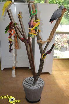 Accessoire : comment fabriquer un arbre à perroquets ? (tutoriel, test, prix)
