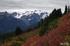 Backpacking Olympic National Park in Autumn