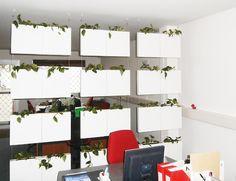 Tabiques separadores de ambientes, cortinas vegetales y revestimientos de pared realizados por Serastone para las oficinas de ATP Corporate Travel en París. #decoracion #oficinas