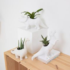 Idea Of Making Plant Pots At Home // Flower Pots From Cement Marbles // Home Decoration Ideas – Top Soop Potted Plants, Indoor Plants, Fake Plants, Deco Originale, 3d Prints, Oui Oui, Unusual Gifts, Quirky Gifts, Glazed Ceramic