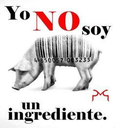 Ser vegano significa respetar a los animales #vegan #vegano #veganism #veganismo Pretty Animals, Cute Animals, Miss My Best Friend, Go Veggie, Amor Animal, Why Vegan, Stop Animal Cruelty, Love Pet, Fact Quotes