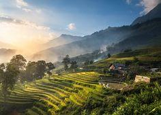 Highlights Vietnam: Natuur, Cultuur, Eilanden en Steden. http://www.azie-expert.nl/vietnam/highlights-vietnam/
