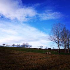 #mywork #landscape #view