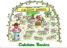 Calcium Basics