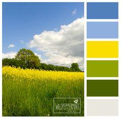#Farbpalette, Farbinspiration, #frühlingsfrische Farben, #frische, #fresh, blau, gelb, grün, weiß, die ultimative frische // © wildpeppermint-design.de