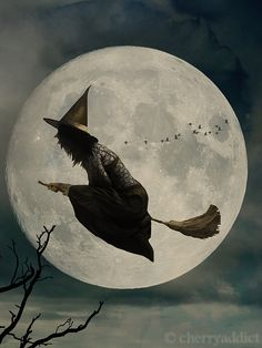 Magick Wicca Witch Witchcraft: Flying to the Moon. Halloween Chat Noir, Holidays Halloween, Vintage Halloween, Halloween Crafts, Happy Halloween, Halloween Moon, Halloween Mural, Halloween Witches, Baba Yaga