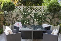 Tiny+courtyard+garden+in+Chiswick+-+in+pictures