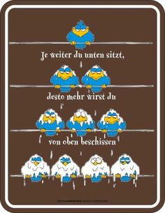 Beschissen Vögel Leitung - Blech-Schild Blechschild mit Spruch, 4 Saugnäpfe - Grösse 17x22 cm Empire Interactive http://www.amazon.de/dp/B00ATQAFS2/ref=cm_sw_r_pi_dp_W5plub0V3W4QQ
