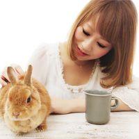 ♡さっぱりコク旨♡鶏むね肉のガリバタぽん酢♡【#簡単#時短#節約】 : Mizuki