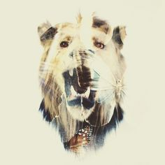 Incredible double exposure series – done in camera – by the talented Dan Mountford.