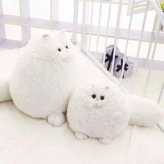 #گربه #گربه_سفید #عروسک #cat #white_cat #dolls