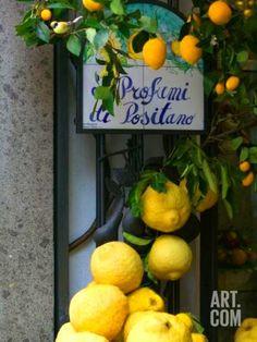 Lemons, Positano, Amalfi Coast, Campania, Italy | photo by Walter Bibikow via art.co.uk ᘡղbᘠ