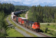 RailPictures.Net Photo: CN 2400 Canadian National Railway GE C40-8M (Dash 8-40CM) at Pedley, Alberta, Canada by Mike Danneman