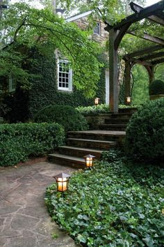 Lovely garden path & lighting! Shop pathlights here: http://smartlivinghg.com/Outdoor-Utility-Lighting/