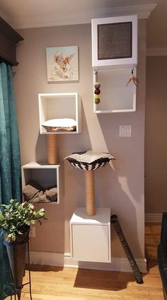 """tree - Source: group of rexs. -Cat tree - Source: group of rexs. - Most Popular Cat Tree Ideas You Will Love - Gregory Neufeld - - Most Popular Cat Tree Ideas You Will Love Cat Tree Cat Runner Cat Shelves I love this design """"Beautiful co. Animal Room, Diy Cat Tree, Cat Hacks, Cat Towers, Cat Playground, Cat Shelves, Cat Enclosure, Cat Room, Pet Furniture"""