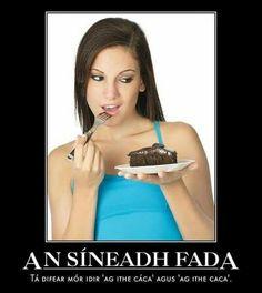 Fada Irish, Jokes, Learning, School, Funny, Faeries, Irish Language, Husky Jokes, Studying