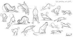 Gatos para dibujar 15 Animal Sketches, Animal Drawings, Poses, Cat Drawing Tutorial, Cat Stretching, Cat Reference, Cat Sketch, Cat Pose, Lazy Cat