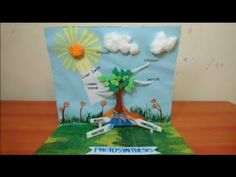 Science Projects For Kids, Science Experiments Kids, Science For Kids, School Projects, Science Penguin, Science Fair, Life Science, Photosynthesis Activities, Photosynthesis And Cellular Respiration