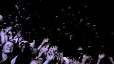 02 Two Door Cinema Club, Strange Music, Cool Bands, Concerts, Good Music, Music Videos