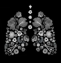 live breathe art Lungs (bits and pieces) | Flickr - Photo Sharing!