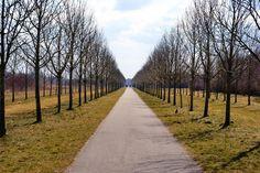 Perspectief  Steven van den Brink: Haarlemmermeer lijnperspectief - horizon met verdwijnpunt