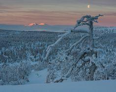 Rendalssølen, Hedmark fylke, Norway. 22 Januari 2014.