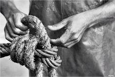 Portugal - Nazare - Fisherman's Hands B.W photo