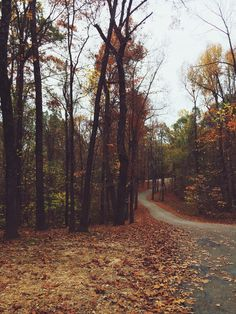 Northeast Arkansas