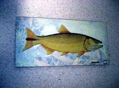 placa decorativa 28x14cm * dourado * imagem art