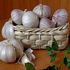 Сажаем озимый чеснок: 5 маленьких хитростей для большого урожая | Огород без хлопот