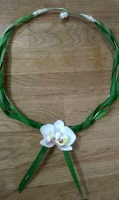 Kaulakoru -orkidea