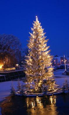 Weihnachtsmarkt und Wellness im Nordseebad Carolinensiel-Harlesiel
