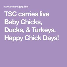 Live Birds at Tractor Supply Co. Tractor Supplies, Backyard Chickens, Baby Chicks, Ducks, Turkey, Live, Day, Peru