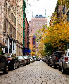 fall in nyc via The Daily Muse