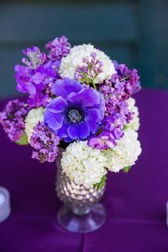 Gorgeous purple flowers.