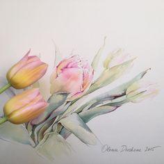 Тюльпаны субботнего рынка... Доброго дня всем! #art #artist #paint #painting #watercolor #watercolorpainting #acuarela #aquarelle…