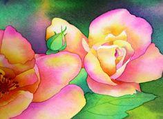 Maigold Roses in Watercolors