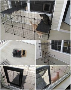 20 Purrfect DIY Projects for Cat Owners catios from wire boxes catio Diy Cat Enclosure, Outdoor Cat Enclosure, Low Maintenance Pets, Animal Gato, Animal Projects, Diy Projects, Cat Cages, Cat Run, Cat Condo