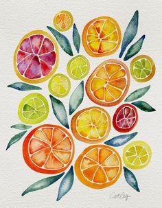 Poster Citrus Kunstdruck von Cat Coquillette East Urban Home Medium: Leinen Watercolor Print, Watercolor Paintings, Painting Prints, Art Prints, Framed Art, Wall Art, Nutrition Education, Nutrition Club, Vegan Nutrition
