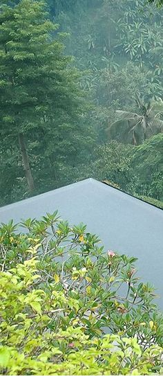 The Maya Ubud …  Beyond Villas Bali has a selection of beautiful villas, all over Bali, to suit every style & Budget. www.beyondvillas.com