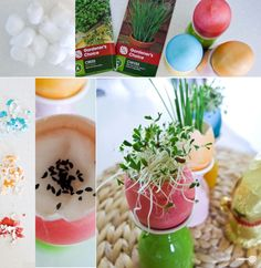 Easter Eggstravaganza - growing edible herbs in the shells