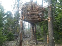 This is amazingly close to the tree fort I built in the woods near my home in Fairbanks, Alaska at the age of 11. Lashing logs to trees, building a base and walls/roof. #boyscouts means I'll always #beprepared