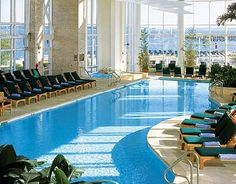 Wintergarden Pool at The Hyatt Regency Chesapeake Bay