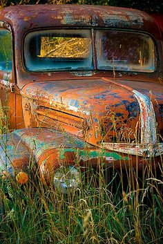 ♂ Aged with beauty abandon rustic Ford truck