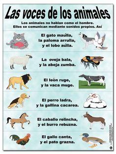 Voces de los animales Spanish Words, How To Speak Spanish, Spanish Language, Spanish Teacher, Spanish Class, Teaching Spanish, Spanish Vocabulary, Bilingual Education, Preschool