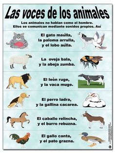 Voces de los animales